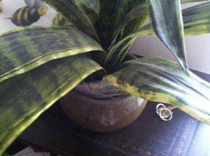 potted plant secret hiding place