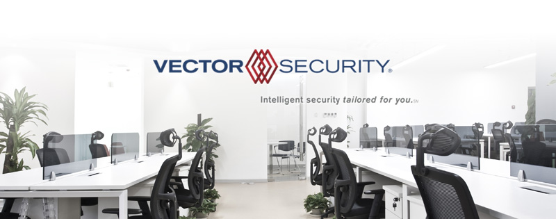 Vector Security: Tailored Security Solutions