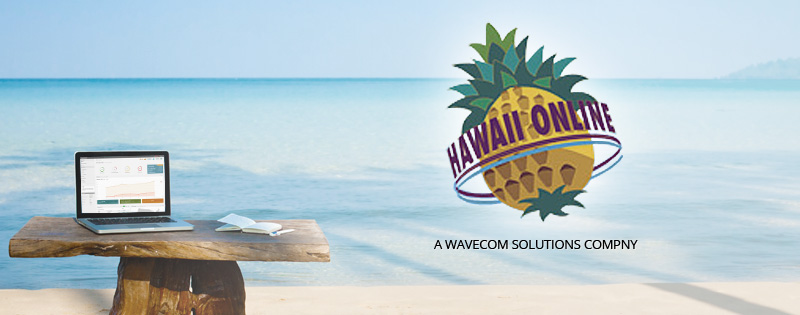 Get A Reliable Connection With Hawaii Online